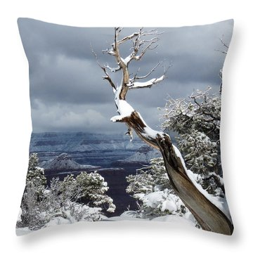 Snowy View Throw Pillow by Laurel Powell