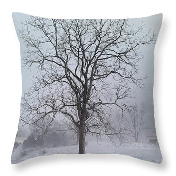 Snowy Walnut Throw Pillow by Denise Romano