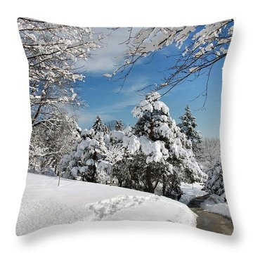 Snowy Wonderland  Throw Pillow by Elaine Manley