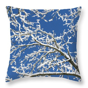 Sns-1 Throw Pillow