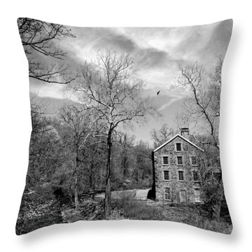 Throw Pillow featuring the photograph Snuff by Diana Angstadt