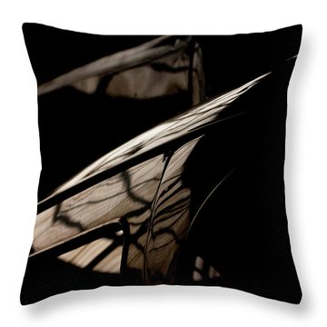 Throw Pillow featuring the photograph So Beautiful by Paul Job