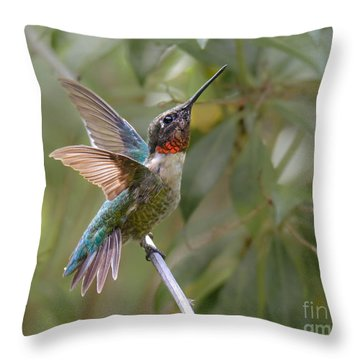 So Handsome Throw Pillow