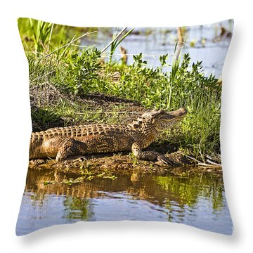 Soaking In The Sun Throw Pillow by Scott Pellegrin