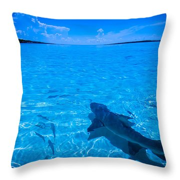 Soaking Up Some Rays Throw Pillow