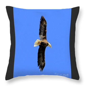 Soar Into The Blue II Throw Pillow