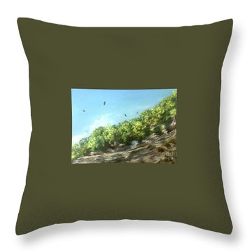 Soaring Above The North Rim Throw Pillow