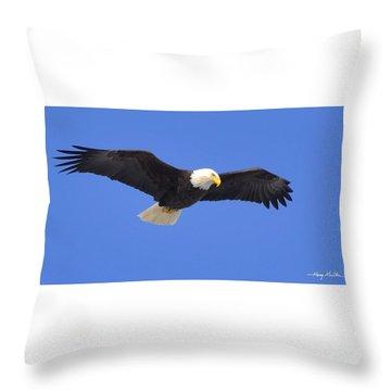 Soaring Eagle Throw Pillow