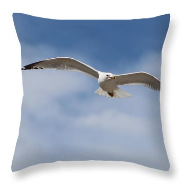 Soaring Free Throw Pillow