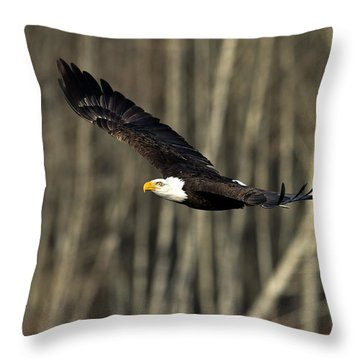 Soaring Glory Throw Pillow