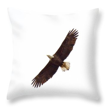 Soaring High 0885 Throw Pillow by Michael Peychich