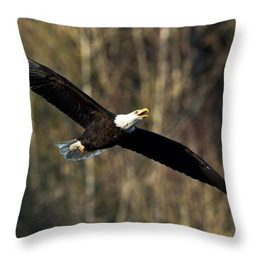 Soaring Higher II Throw Pillow