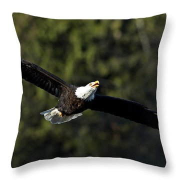 Soaring Higher Throw Pillow