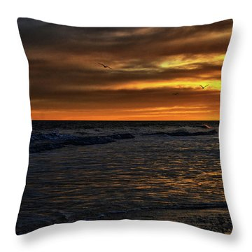 Soaring In The Sunset Throw Pillow by Kelly Reber