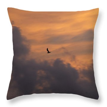 Throw Pillow featuring the photograph Soaring Into The Sunset by Richard Bryce and Family