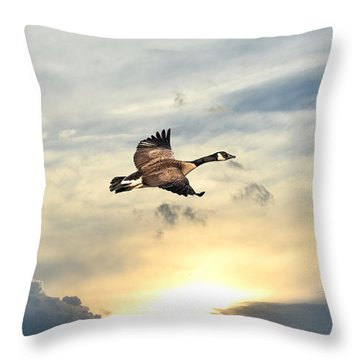 Soaring Over A Sunset Throw Pillow