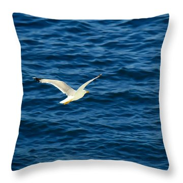 Soaring Over The Mediterranean Throw Pillow