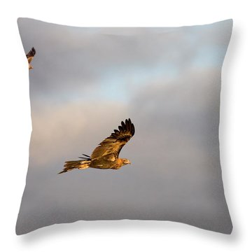Soaring Pair Throw Pillow by Mike  Dawson