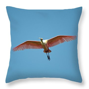 Soaring Roseate Spoonbill Throw Pillow by Kenneth Albin