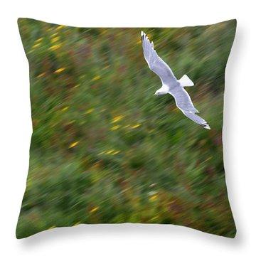 Throw Pillow featuring the photograph Soaring Seagull by Joe Bonita