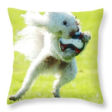 Soccer Dog-3 Throw Pillow