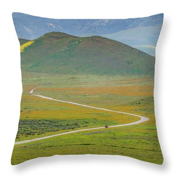 Soda Lake Road Throw Pillow by Marc Crumpler