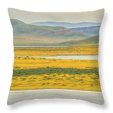 Throw Pillow featuring the photograph Soda Lake To Caliente Range by Marc Crumpler