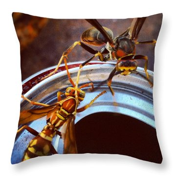 Soda Pop Bandits, Two Wasps On A Pop Can  Throw Pillow