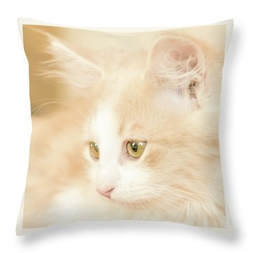 Soft And Dreamy Throw Pillow
