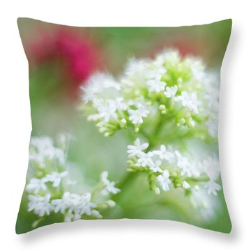 Soft And Gentle Throw Pillow