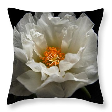 Throw Pillow featuring the photograph Soft And Pure by Judy Vincent