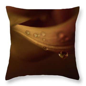 Soft And Smooth Throw Pillow