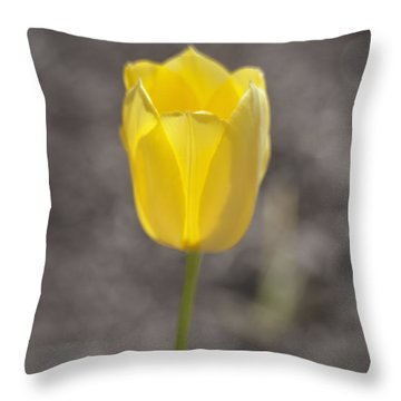 Soft And Yellow Throw Pillow