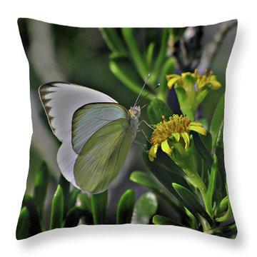 Soft As A Leaf Throw Pillow