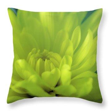 Soft Center Throw Pillow