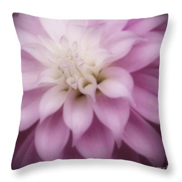 Soft Dahlia  Throw Pillow