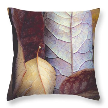 Soft Fallen Leaves Throw Pillow by The Forests Edge Photography - Diane Sandoval