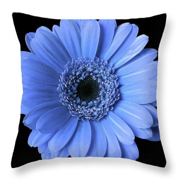 Soft Flower Joy Throw Pillow