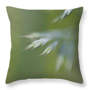 Soft Green Throw Pillow