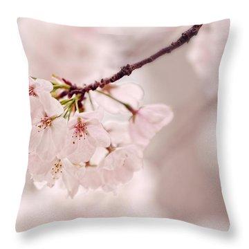 Soft Medley Throw Pillow
