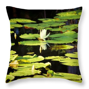 Throw Pillow featuring the photograph Soft Morning Light by Jan Amiss Photography