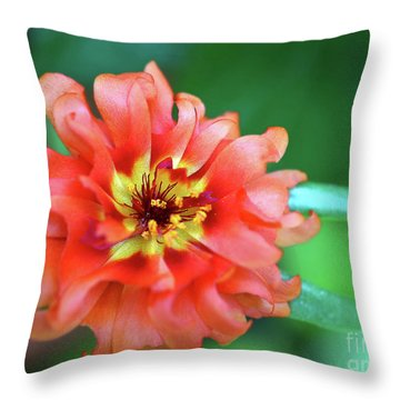 Soft Peach Ruffled Petals Throw Pillow by Sue Melvin