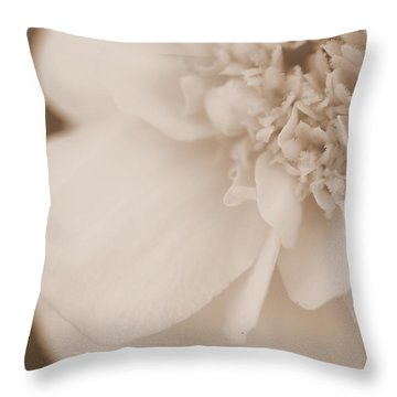 Soft Petals Throw Pillow by Christine Ricker Brandt