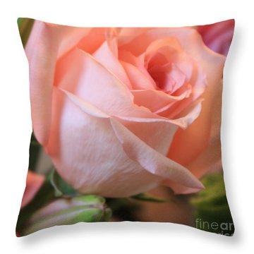 Soft Pink Rose Throw Pillow by Carol Groenen