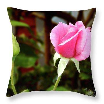 Soft Pink Wild Rose Throw Pillow