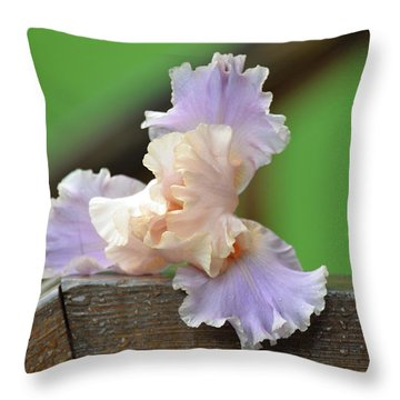 Throw Pillow featuring the photograph Soft Purple Iris by Lila Fisher-Wenzel