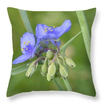 Soft Purple Spider Throw Pillow
