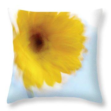 Soft Radiance Throw Pillow