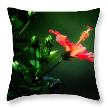 Soft Red Hibiscus Plant Throw Pillow