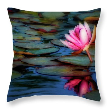 Soft Reflection Throw Pillow